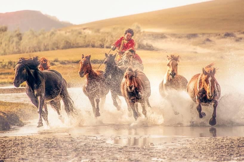 一条穿越最美草原的路线自带撩人秋景 国庆还有特价机票