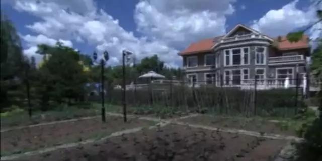副部豪宅院子面积3000平米金条装进茶叶罐埋树下