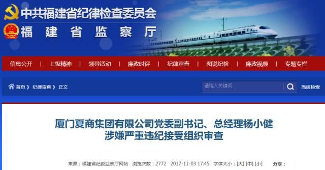 厦门夏商集团有限公司党委副书记,总经理杨小健被查