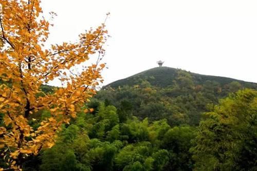 旅游  西九华山风景区地处大别山脉海拔七百余米的崇山峻岭之中,生态