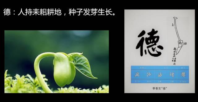 """甲骨文中""""德""""字原意是耕种及种子发芽-杨鹏讲 道德经 为何说伟大的"""
