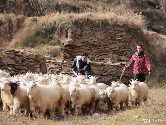 窦文涛、张星月在陕北体验书中生活——放羊