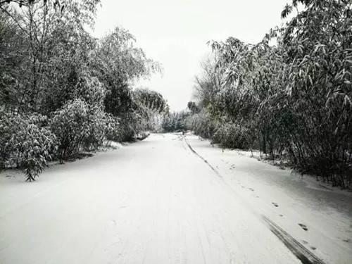 d冬天窗外的风景