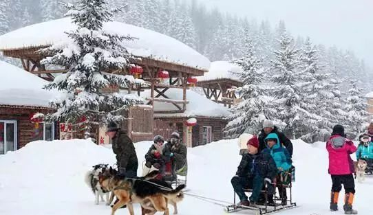 中国最美雪景村庄 雪乡超详细攻略全在这