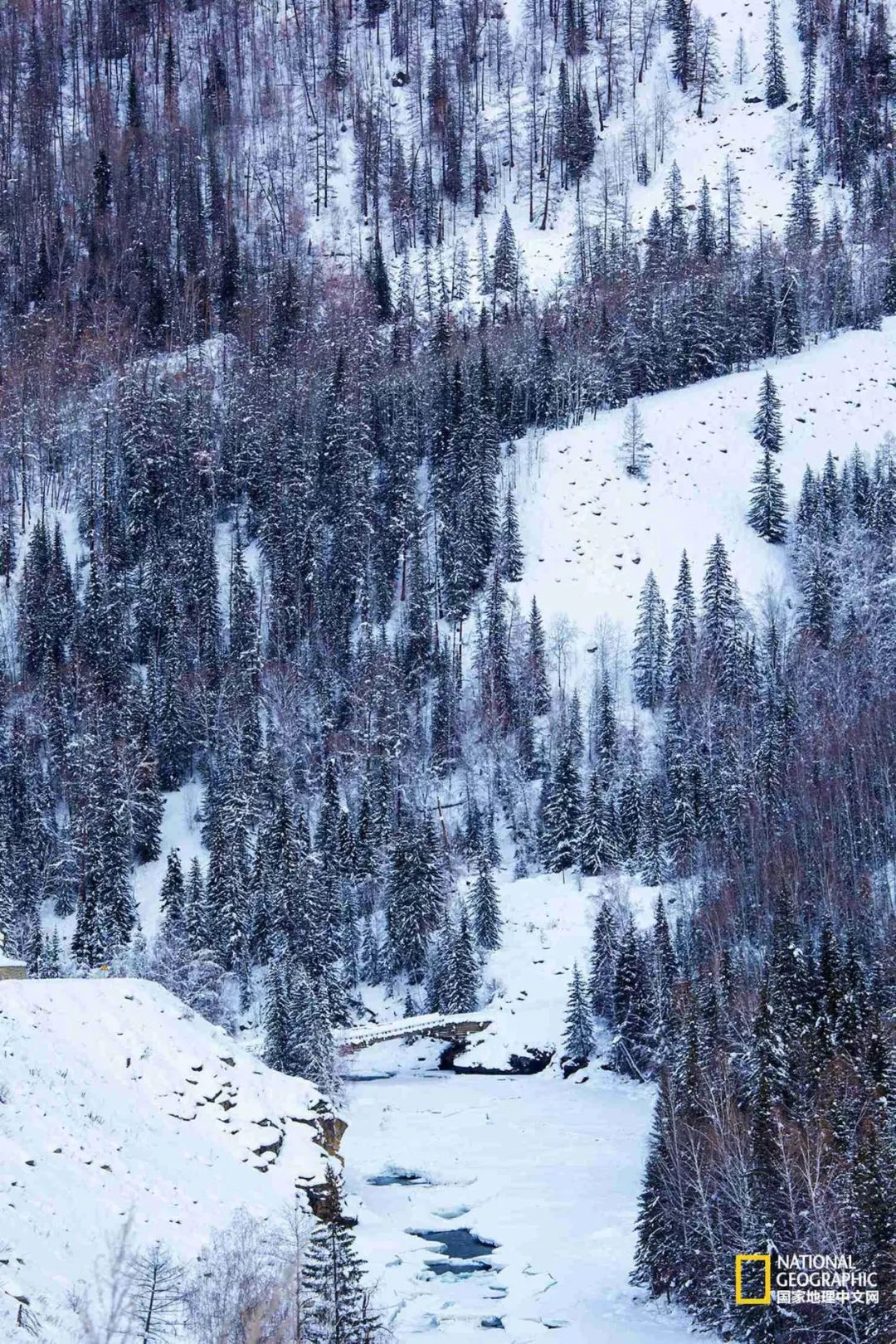 无论这个冬天还是这辈子 雪舞北疆是你一定要去一趟的地方
