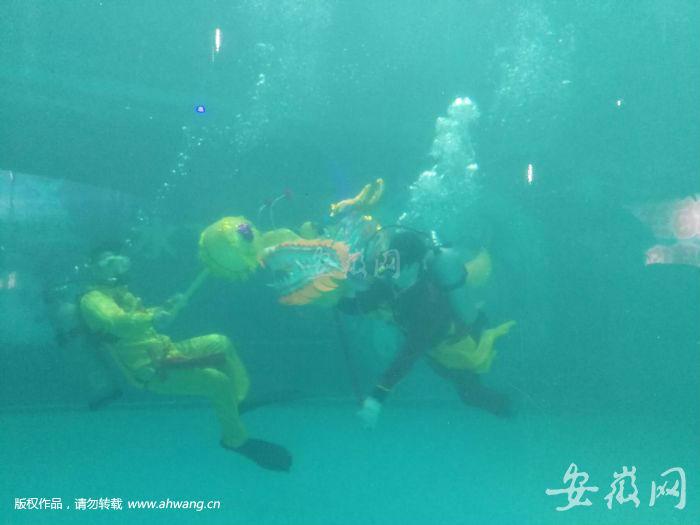qq图像风景海底