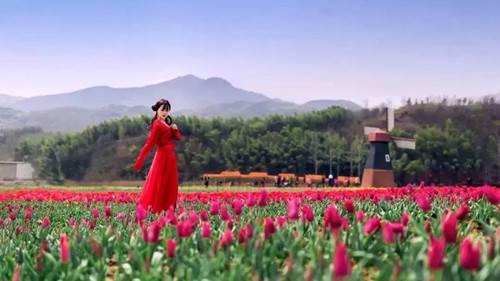3.24河南西九华山第二届郁金香风情文化节惊险、刺激、N种玩法超乎你想象(图)