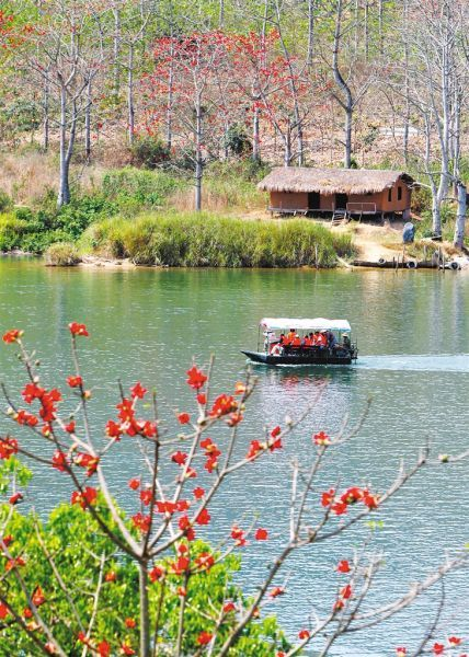 一艘游船搭载着游客,在昌化江畔木棉花的映衬下畅游。 黄宾虹摄