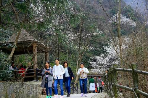 龙津溪地景色秀春暖花开游人乐