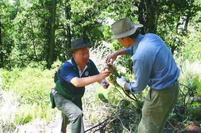 钟扬(左)在野外考察。复旦大学供图