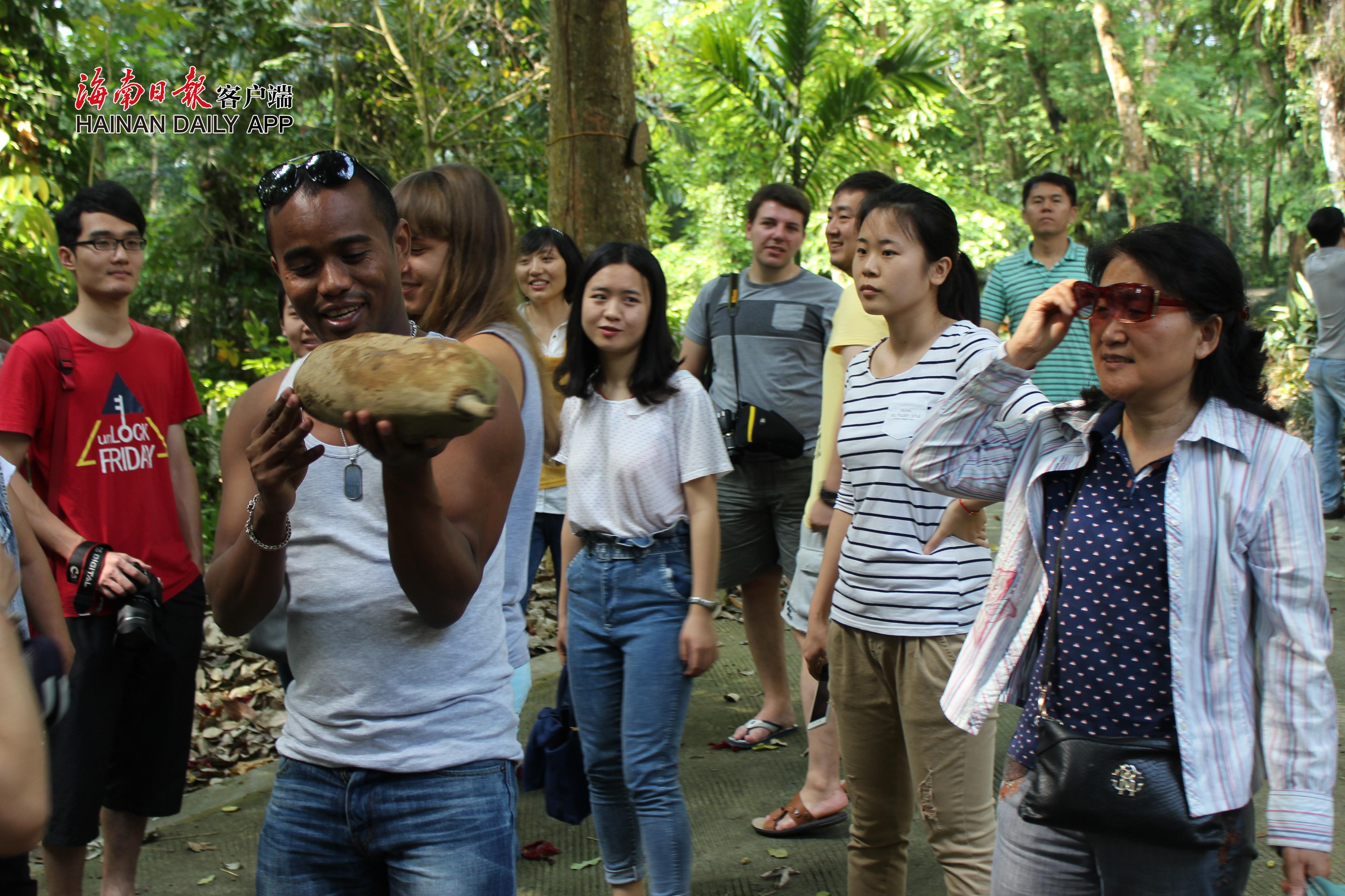 """图二,147名来华留学生儋州""""体验游""""。图为来自马达加斯加的留学生毕为诺,兴奋地托起海南热带植物园的一个大果实。本报记者易宗平摄_副本.jpg"""