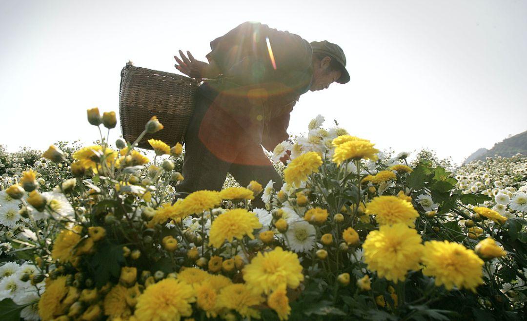 读解徽州:千年、四季、十二时、此刻 | 大美中国