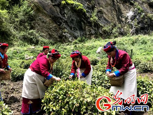 【新时代·美丽幸福新边疆】网媒记者西藏山南行:记录雪域变迁,描绘边疆新颜