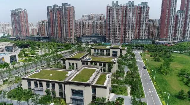 """浐灞生态区 """"西安丝路国际会展中心,未来将以欧亚经济论坛为依托"""