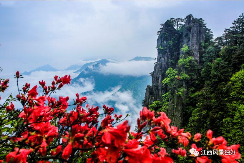 旅游  江西武功山-羊狮慕景区位于安福武功山风景名胜区东北部,是国家
