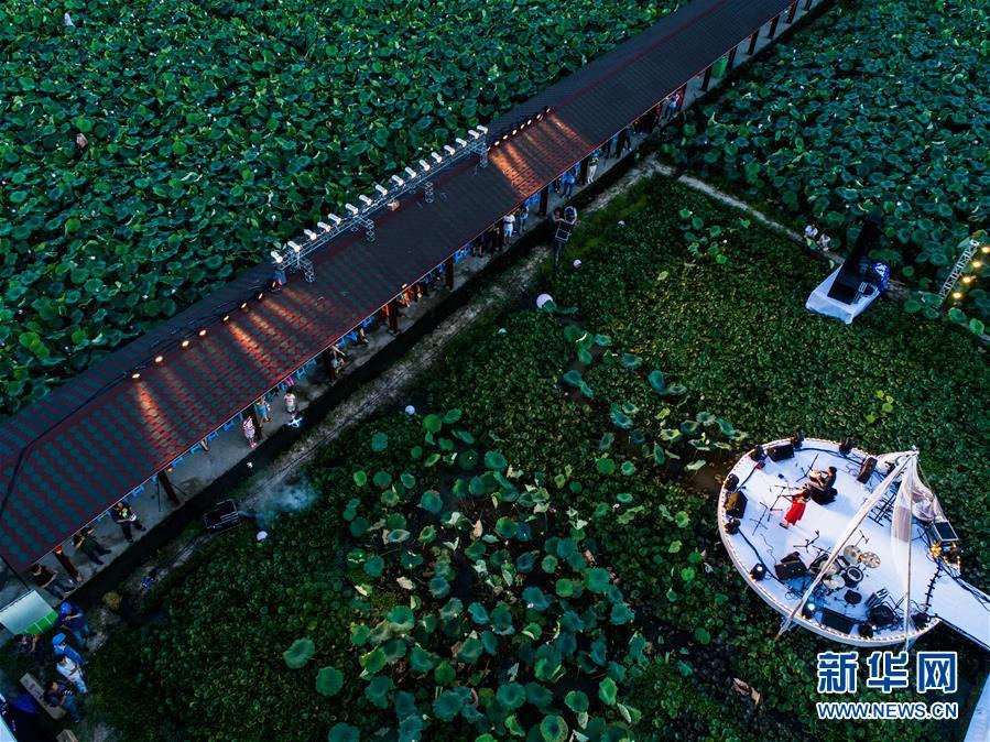 (新华全媒头条·在习近平新时代中国特色社会主义思想指引下——新时代新作为新篇章·乡村振兴战略·图文互动)(9)乡村振兴战略开局有力农业农村发展亮点频现