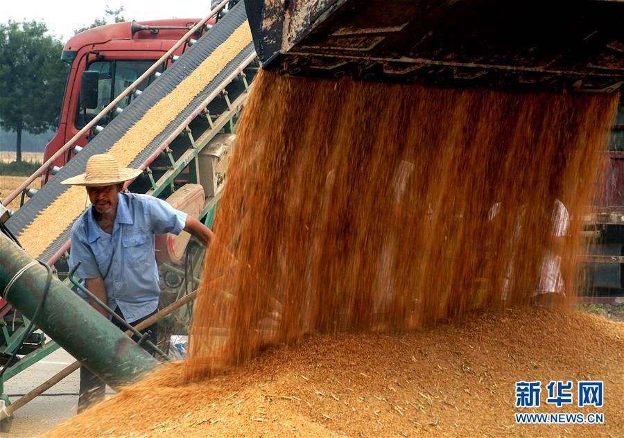 (新华全媒头条·在习近平新时代中国特色社会主义思想指引下——新时代新作为新篇章·乡村振兴战略·图文互动)(1)乡村振兴战略开局有力农业农村发展亮点频现