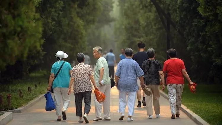 """湖南7旬老人与5旬女子闪婚后离婚,""""搭伴养老""""给钱就行?"""
