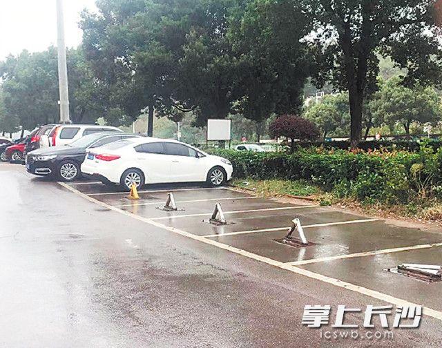 桃阳社区四期高层前坪的停车位被安装了地锁,一些市民认为这造成资源闲置。长沙晚报记者邓艳红摄
