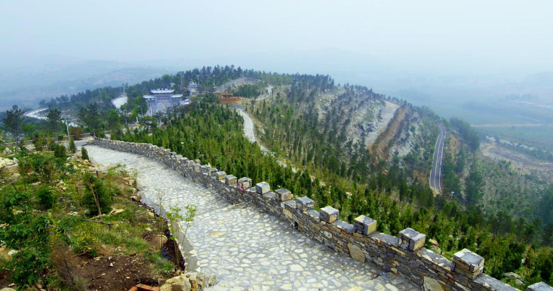济宁林业生态建设进入快车道,森林资源持续增长