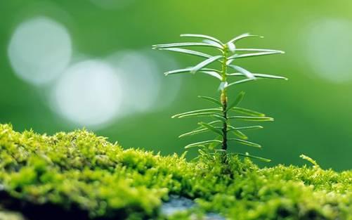 孟若楠:生命在奋斗,辛福在感悟