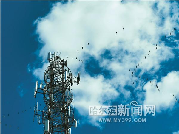 http://www.hljold.org.cn/heilongjianglvyou/77478.html
