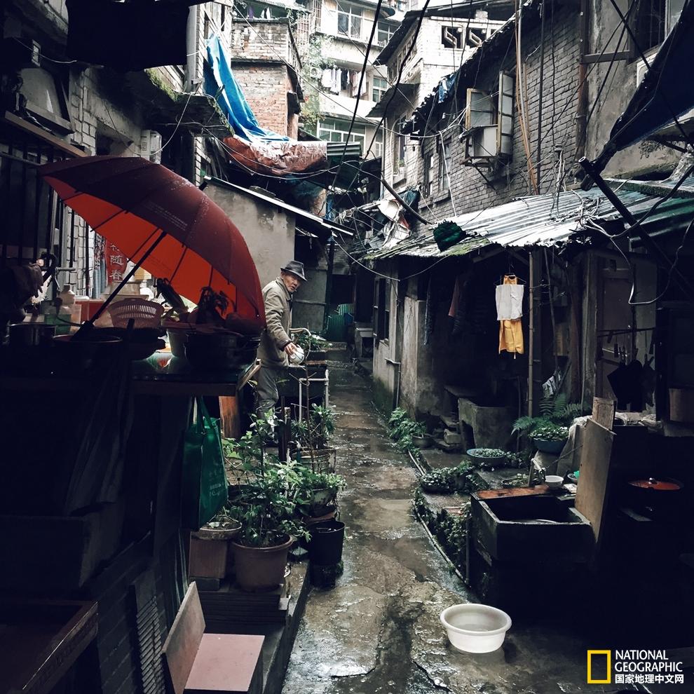 老街也会开辟出大小不规则的空地,砌几块石挡,种几棵树,摆几张拙朴的