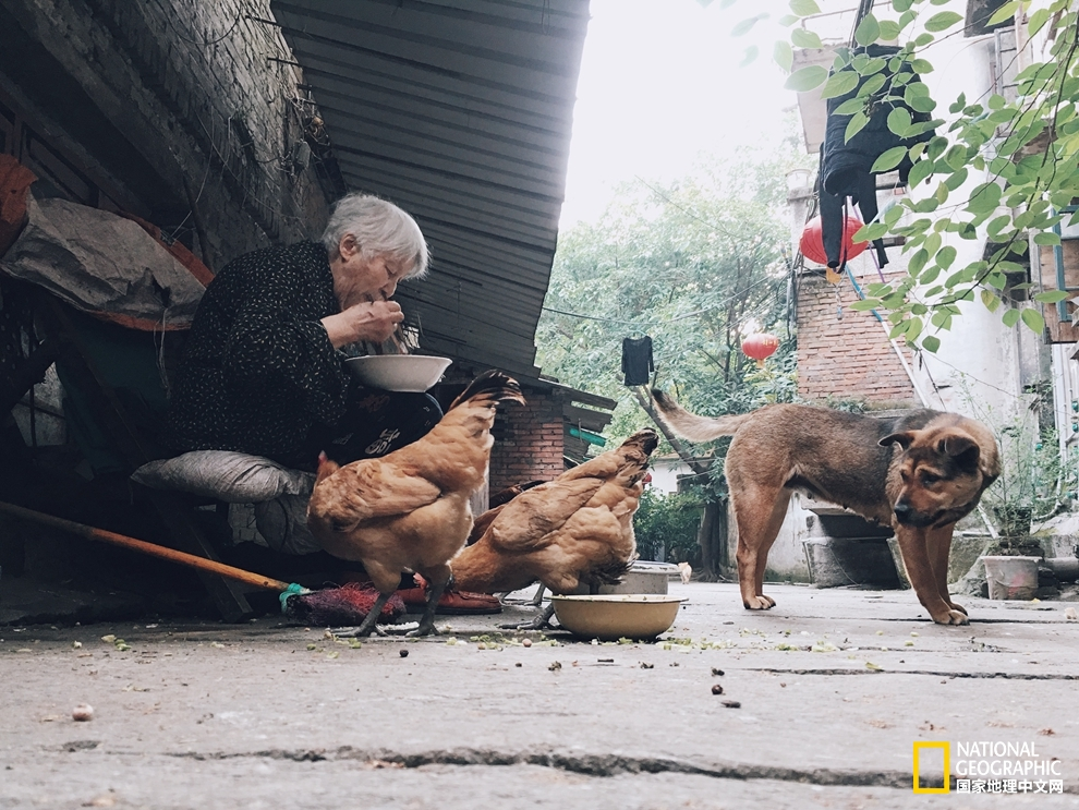 下浩老街:长江南岸的旧重庆