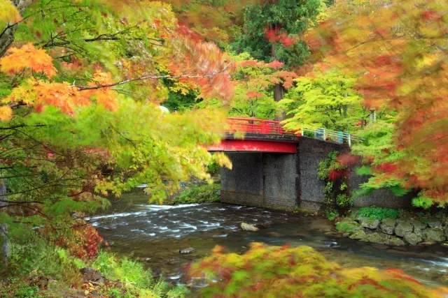 日本小众赏红叶的好去处 还方便刷三年签13