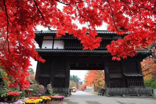 日本小众赏红叶的好去处 还方便刷三年签5