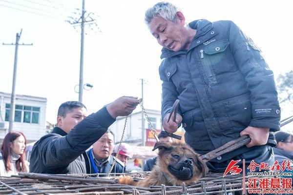 大爷当街屠狗卖肉市民众筹救狗