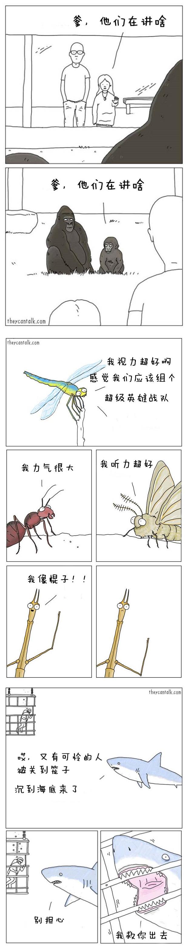 动物能不能说话不知道