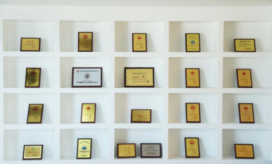 专利荣誉墙设计