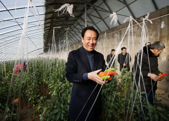 考察现代生态循环农业产业基地的温室大棚。