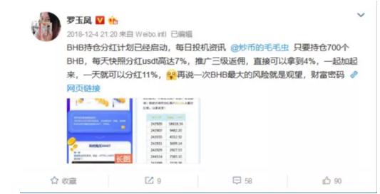凤姐代言传销币:号称一天可分红11% (组图)