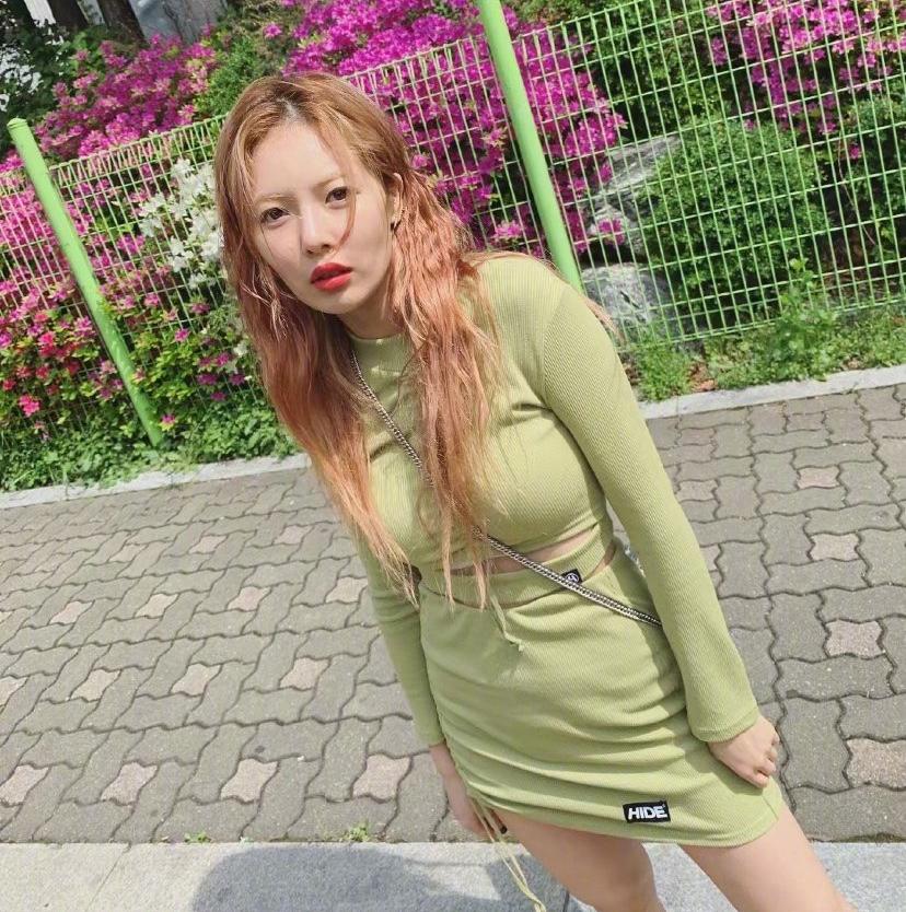 今夏牛油果色成为流行色:雅的少女感其实超好学!