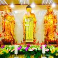 全球逾244家寺院将联合为唐山祈福