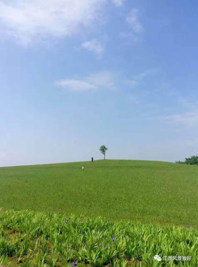 江西湿地公园_江西十大最美湿地公园 惊艳了时光_江西频道_凤凰网